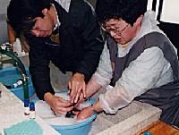 洗面器などに湯を入れ、洗剤を 溶かして準備する。