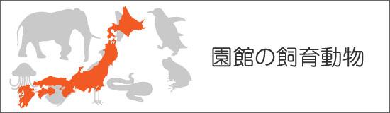 園館の飼育動物